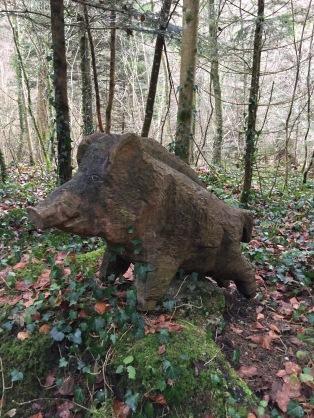 Wildschwein beim Aufstieg zum Stählibuckturm