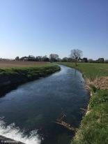 Fiumicello / Friuli-Venezia Giulia / Italy - 4/1/19