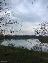 Bagnaria Arsa / Friuli-Venezia Giulia / Italy - 4/3/19