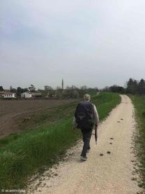 Noventa di Piave / Veneto / Italy - 4/9/19