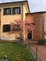 Musile di Piave / Veneto / Italy - 4/10/19