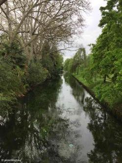 Treviso / Veneto / Fiume Sile / Italy - 4/12/19