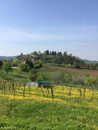 Altavilla Vicentina / Veneto / Italy - 4/16/19