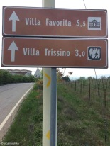 Sarego / Veneto / Italy - 4/16/19