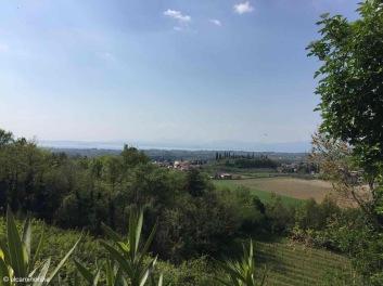 Pastrengo / Veneto / Italy - 4/19/19