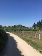 Lazise / Veneto / Italy - 4/20/19