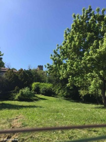 Castelnuovo / Emilia–Romagna / Italy - 5/1/19
