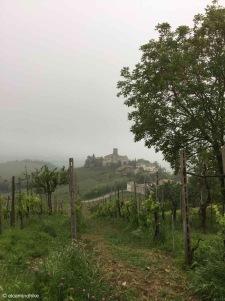 Santa Giuletta / Lombardy / Italy - 5/4/19