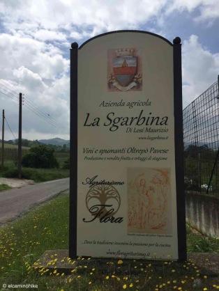 Montebello della Battaglia / Lombardy / Italy - 5/4/19