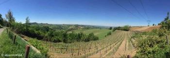 Sarezzano / Piedmont / Italy - 5/6/19