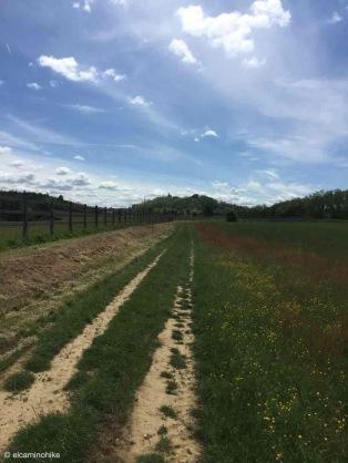 Cassano Spinola / Piedmont / Italy - 5/7/19