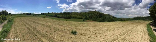 Gavazzana / Piedmont / Italy - 5/7/19