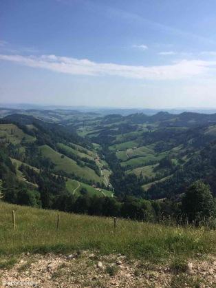 Steg im Tösstal / Zürich / Switzerland - 7/5/19
