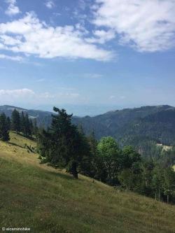 Libingen / St. Gallen / Switzerland - 7/5/19