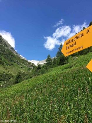 Reckingen-Gluringen / Valais / Switzerland - 7/16/19