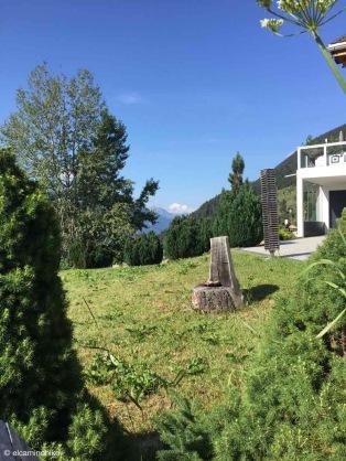 Blitzingen / Valais / Switzerland - 7/17/19